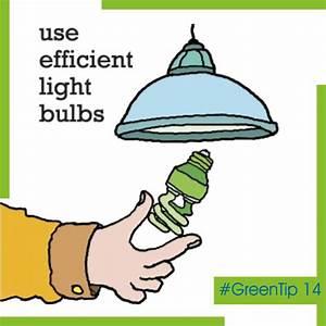 Use Efficient Light Bulbs Traditional Light Bulbs Have An
