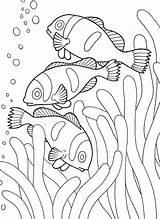 Coloring Pages Aquarium Trending Days Last sketch template