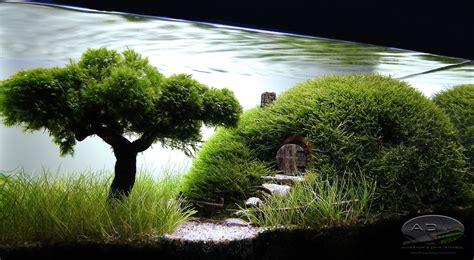 Aquascaping Forum - aquascaping our preciousss quot by adist aquascaping
