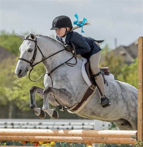 pony hunter young ushja championships ponies hunters debut horses booker tricia credits archives under open years