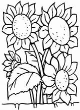 Coloring Flowers Simple Children Pages sketch template