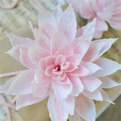 fiore la rosa dalia di carta con sfumature rosa la figurina shop