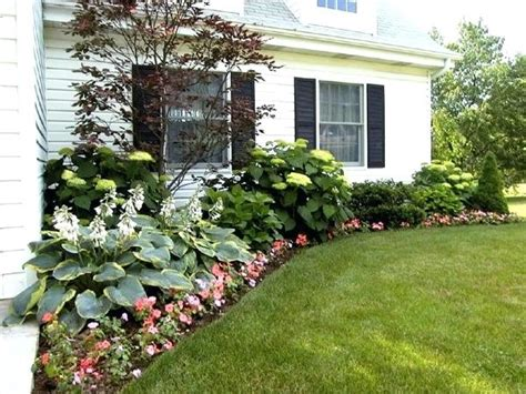 shrubs for front of house pictures front of house landscaping shrubs landscaping ideas front house landscaping shrubs