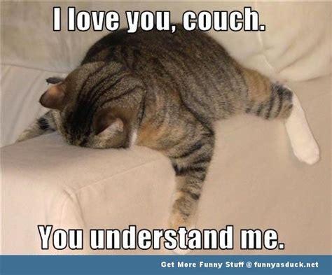 Funny Memes On Love - cute animal love memes image memes at relatably com