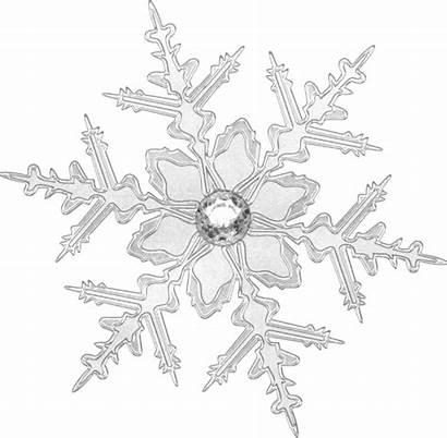 Invitations Winter Zazzle Snowflake Crystal Invitation