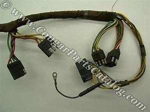 Taillight Wiring Harness - Standard - Early  3