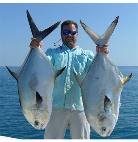 permit pompano fish tampa fishing species bay reefs