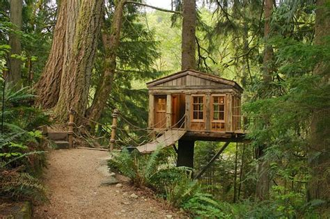 Treehouse Point-updated B&b Reviews (issaquah