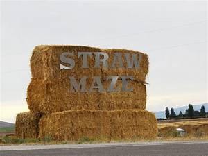 Fall, Farm, Signs, Easy, Decor, For, Farm, Festivals