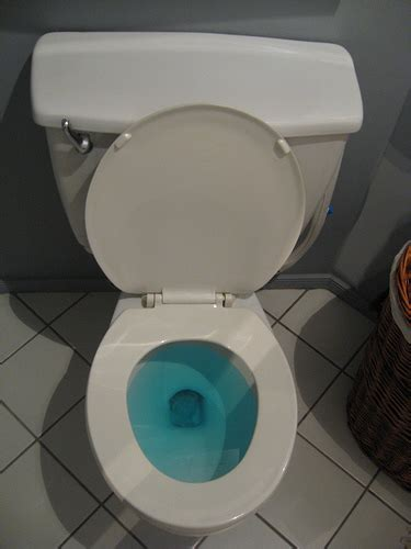 83 flushing a toilet with blue water in it 1000 awesome