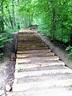 Mom Explores Michigan: Outdoor Fun: Nichols Arboretum, Ann ...