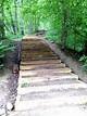 Outdoor Fun: Nichols Arboretum, Ann Arbor, MI – Brooke ...