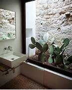 Indoor House Decorating Ideas Gallery Of 17 Indoor Cactus Gardens