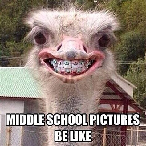 Middle School Memes - best 25 middle school memes ideas on pinterest middle school funny teaching memes and