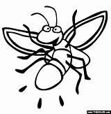 Firefly Coloring Luciernagas Colorear Dibujos Luciernaga Insetti Lucciole Lucciola Dando Pintar Luz Dibujo Animali Poem Fireflies Dibujosparacoloreargratis Insekten Poems Tiere sketch template