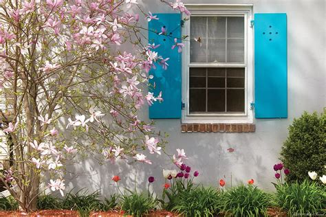spring spring window photograph  mike savad