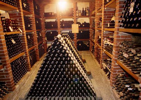 cellar wine  drink   wine folly