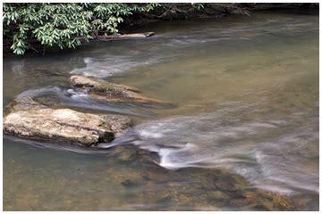 fish hook point blue ridge cabin rental trout stream