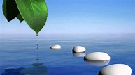 Calming Zen Spa Music To Calm & Relax the Body, Mind & Spirit (Tranqulity PLUS!) - YouTube