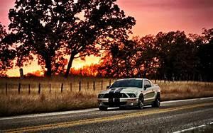Mustang HD Wallpaper WallpaperSafari