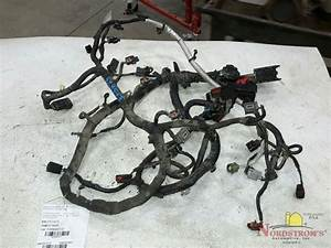 2013 Ford Focus Engine Wire Harness 10