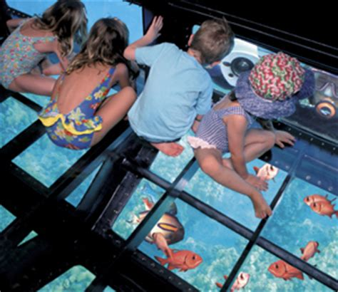 Glass Bottom Boat Bahamas by Lucayan Glassbottom Boat Tour Bahamas Tour Center