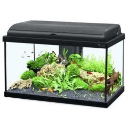 aquarium 100 litres pas cher achat aquarium 50 litres
