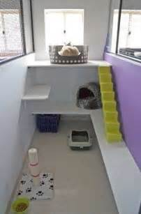 cat room 1000 ideas about cat room on cat trees cat