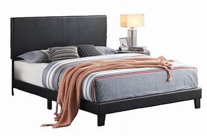 Bed Platform Beds Furnitureurban Furniture Kid Yates