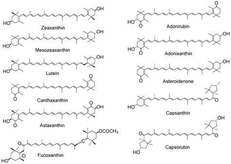 antioxidants  full text singlet oxygen