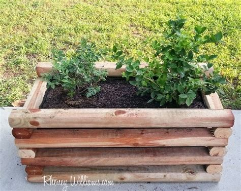 diy garden box diy planter box for berries and other fruits