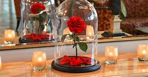Rose Eternelle Sous Cloche : cette entreprise britannique a recr la rose ternelle de la belle et la b te daily geek show ~ Teatrodelosmanantiales.com Idées de Décoration