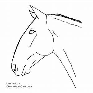 Horse Head Coloring Page - GetColoringPages.com