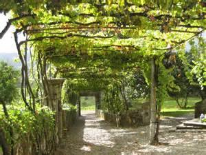 Park Designs Curtains by Aphros Winery Braga Portugal The Far North Treeyo