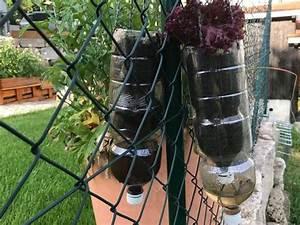 Salat Pflanzen Abstand : upcycling pflanzent pfe mit bew sserung ~ Markanthonyermac.com Haus und Dekorationen
