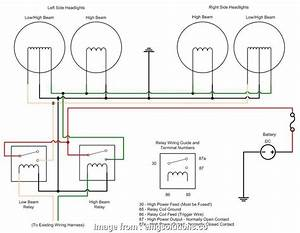 Wiring A Light Switch  And Black Perfect Car Light Diagram