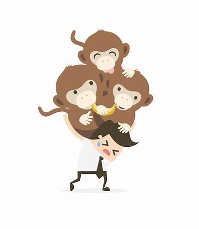 Monkey Stress Management Louisa Valvano February Posted