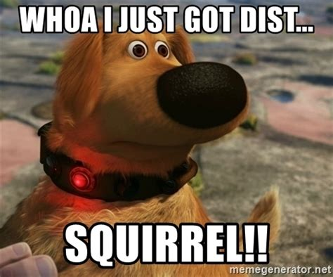 Squirrel Meme - whoa i just got dist squirrel distracted dug meme generator