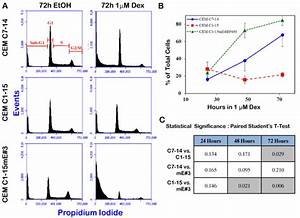Flow Cytometric Cell Cycle Analysis Demonstrates Sub