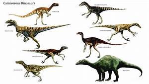 Carnivorous Dinosaurs - Carnivore Dinosaurs