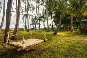 Accrocher Hamac Arbre : hamac en bambou de rotin accrochant sur l 39 arbre photo ~ Premium-room.com Idées de Décoration