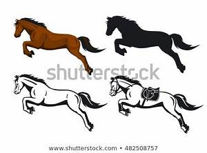 Horse Jumping Fence Stock Images, Royalty-Free Images ...