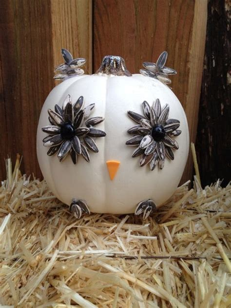 owl decorating ideas   home ultimate home ideas
