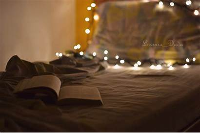 Bed Lights Romantic Reading Soft Sweet Night