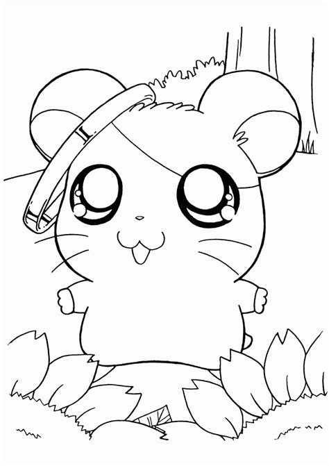 hamster coloring pages    print