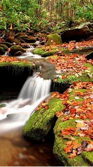 3d Nature wallpapers   New 3d nature wallpapers ...