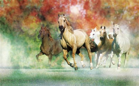 Galloping Horses For Desktop Wallpapers 2560x1600