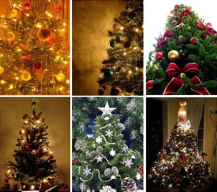 tips for keeping your home safe with live christmas trees