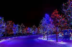 wallpaper winter christmas new year snow street tree night lights decorations desktop