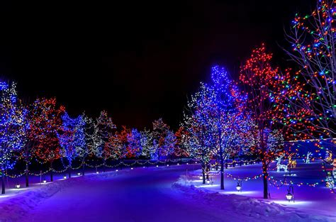 christmas night light wallpaper winter new year snow tree lights decorations desktop